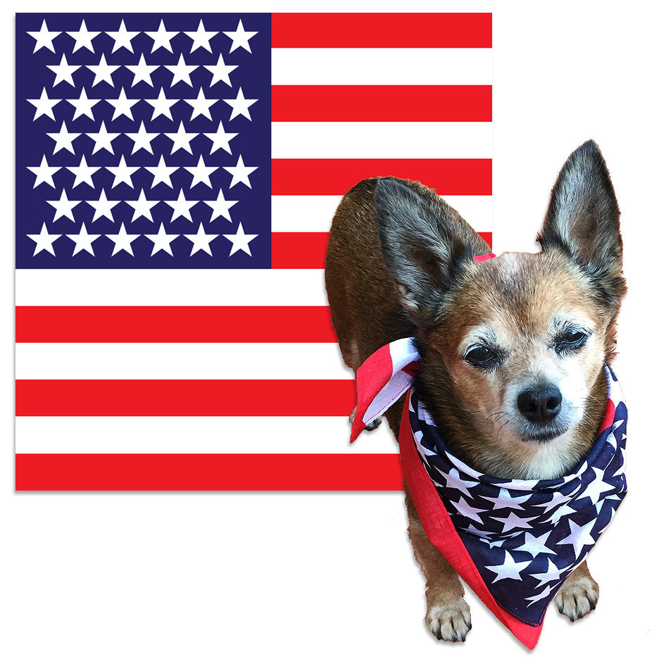 American Flag Dog Bandana – Wag the Flag!