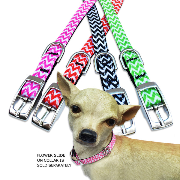 Chevron Design Small Dog Collar