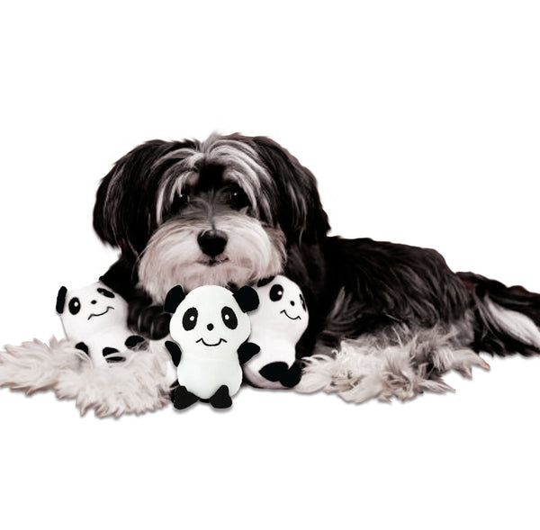 Little Panda Bear Small Dog Toy
