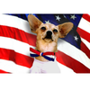 Red, White & Blue Small Dog Bow Tie Collar