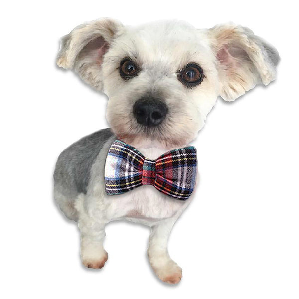 Plaid Bow Tie for Small Dogs