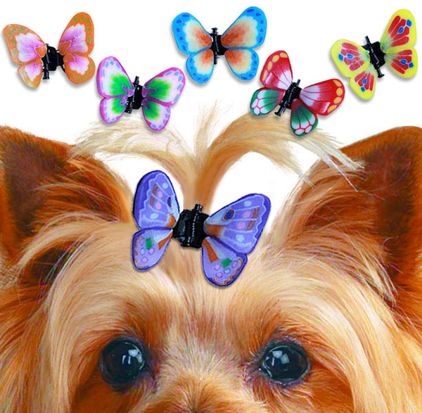 Butterfly Hair Accessory for Small Dogs