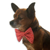 Bow-Ho-Ho-Ho Tie! for Small Dogs