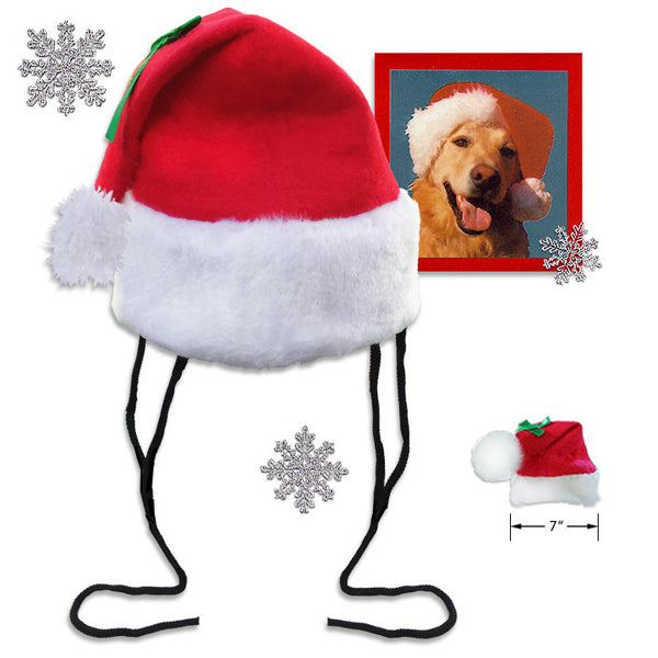 Big Dog Santa Hat