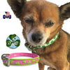 Lucky Shamrock Dog Collars, , Collar, Small Dog Mall, Small Dog Mall - Good things for little dogs.  - 1