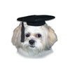Dog Grrrrrrad Cap, , Hat, Small Dog Mall, Small Dog Mall - Good things for little dogs.  - 2