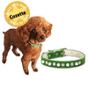 Jeweled Green Velvet Small Dog Collar