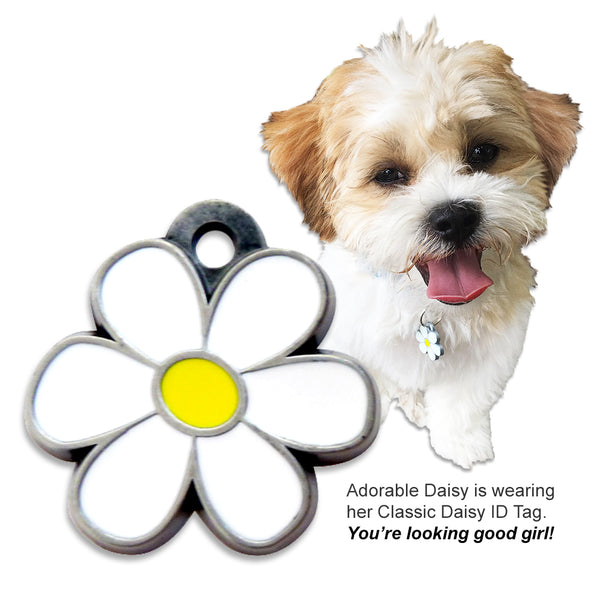Our Most Popular Tag: Classic Enameled Daisy Dog ID Tag for Small Dogs