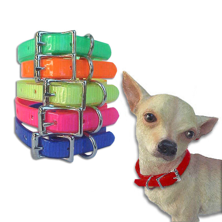 Vibrantly Colored & Indestructible Jelly Collars for Small Dogs