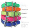 A Bowl-Full-of-Jelly Dog Collars!!! - Small Dog Mall - Good things for little dogs. - 3