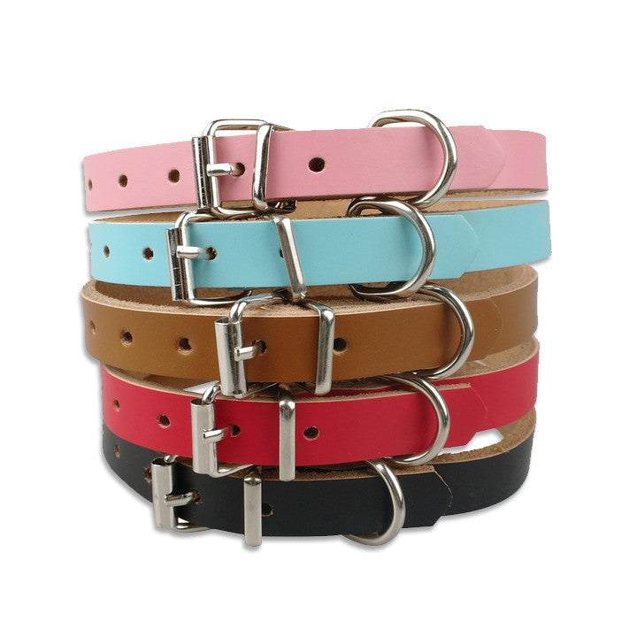 Small Dog Leather Collar in Five Colors!