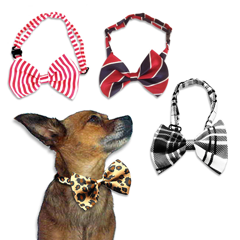 Dapper Dog Bow Ties for Dogs
