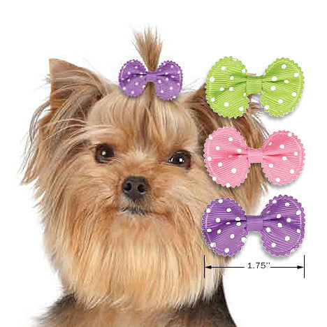 Grosgrain Ribbon Dot Dog Hair Bows, , Hair Accessory, Small Dog Mall, Small Dog Mall - Good things for little dogs.  - 2