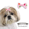 Star Bow Barrette for Dogs, , Hair Accessory, Small Dog Mall, Small Dog Mall - Good things for little dogs.  - 2