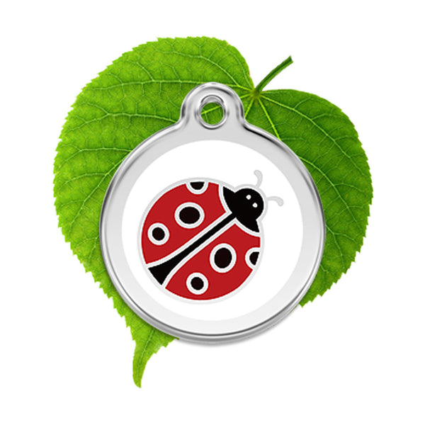 Ladybird ID Tag, , ID Tag, Small Dog Mall, Small Dog Mall - Good things for little dogs.  - 1