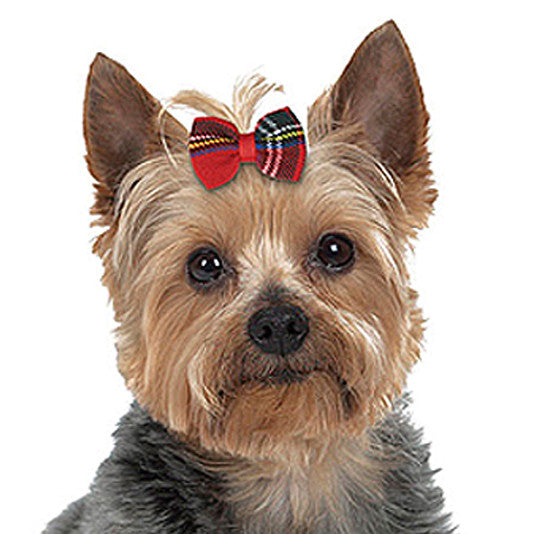 Tartan Hair Bow for Small Dogs