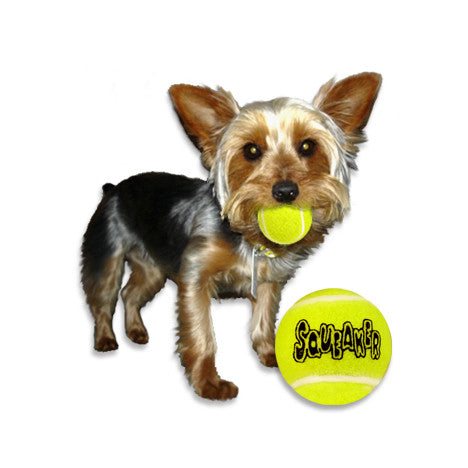 Tiny Tennis Balls Small Dog Toy!, , Toy, Small Dog Mall, Small Dog Mall - Good things for little dogs.  - 1