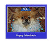 Dog Yarmulke, , Chewish, Small Dog Mall, Small Dog Mall - Good things for little dogs.  - 3