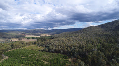 overview of Myrrhee Valley and orchards
