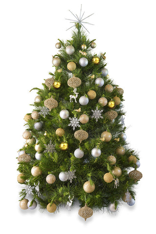 Real Christmas tree delivered Melbourne hire free delivery