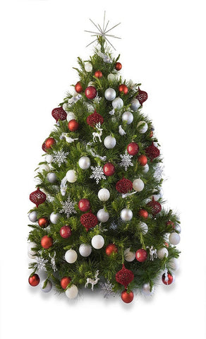 'Noel' real decorated Christmas Tree - Hire