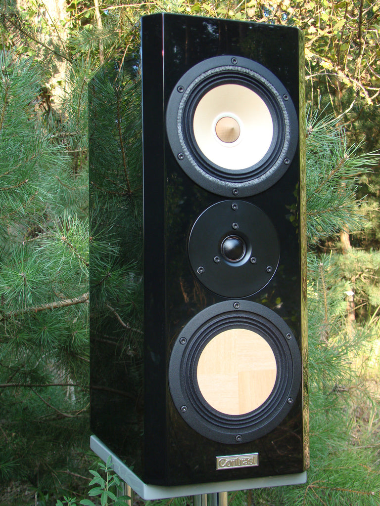 Contrast Audio Magic Speakers