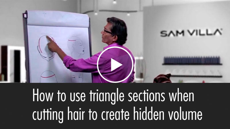 Using Triangle Sections to Layer Hair and Create Hidden Volume