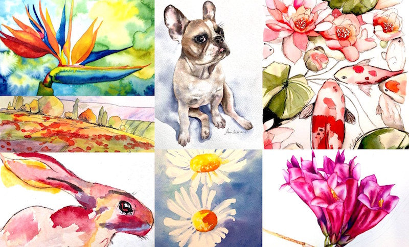 Brisbane Watercolour Painting Classes for Beginners