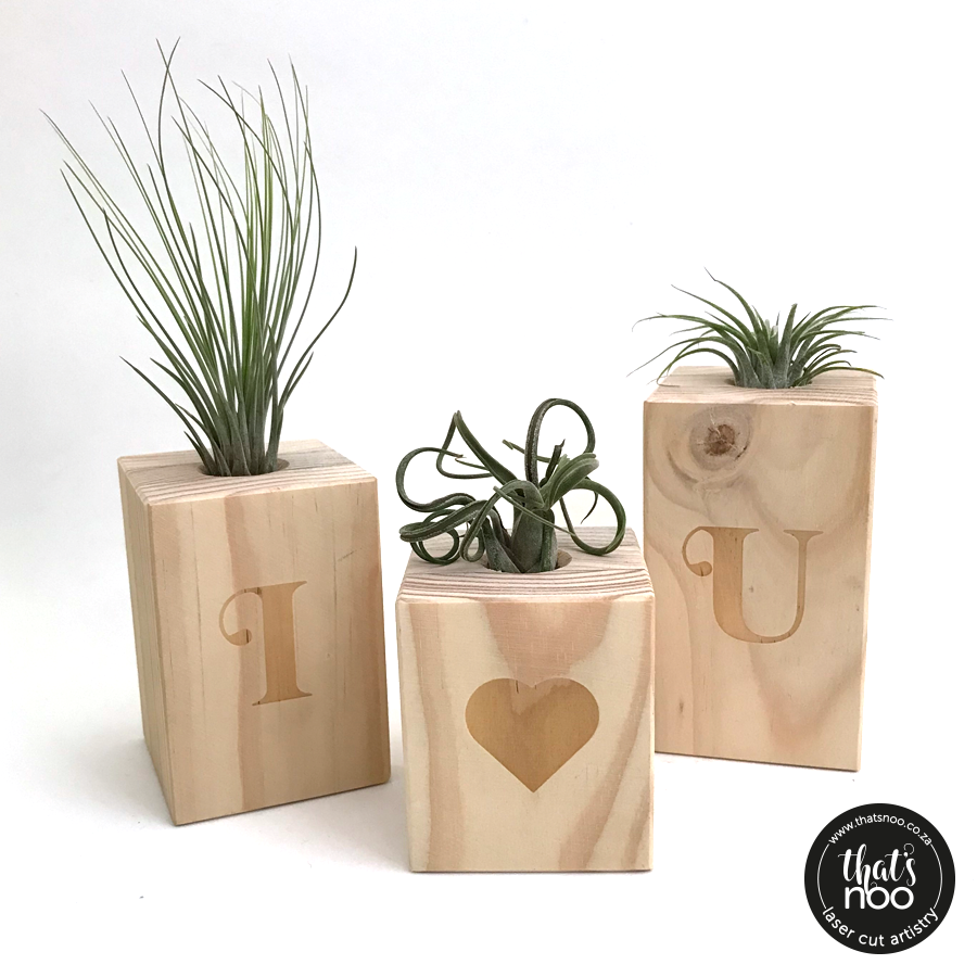 Airplant Blocks with Engraved Monograms (set of 3)