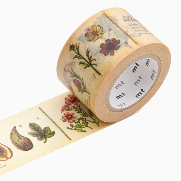 Masking Tape - mt ex encyclopedia plant