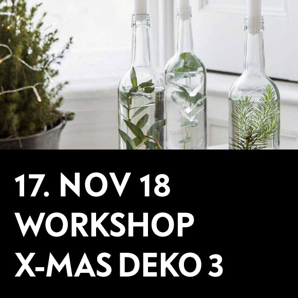 Workshop - Weihnachts-Deko 3 17. Nov. 2018