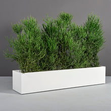 "Load image into Gallery viewer, Narbonne Rectangular Fiberglass Planter Box: 65""L x 14""W x 12""H"