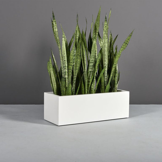 Kiel Rectangular Fiberglass Planter Box: 36
