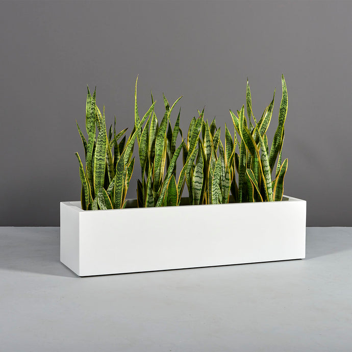 Montserrat Rectangular Fiberglass Planter Box: 48