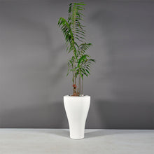 "Load image into Gallery viewer, Jay Scotts Strasbourg Round Planter: 26"" x 40""H"