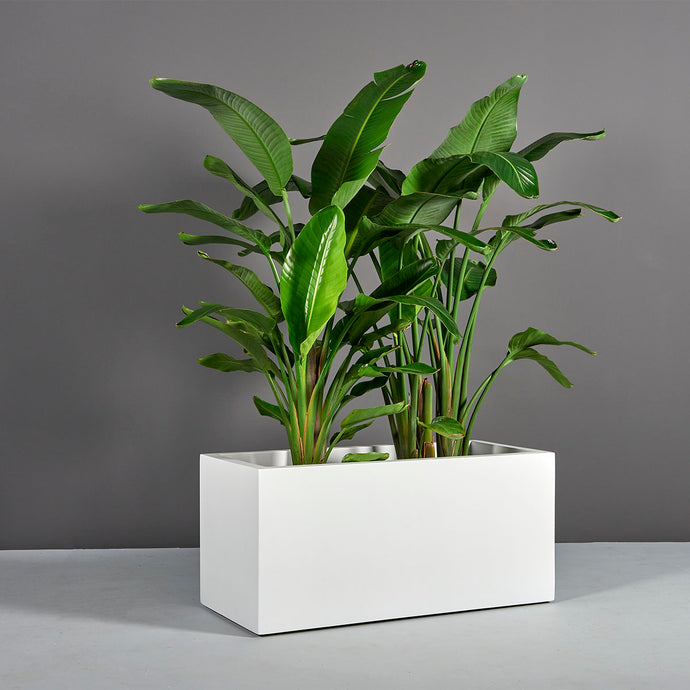 Badalona Rectangular Fiberglass Planter Box: 39