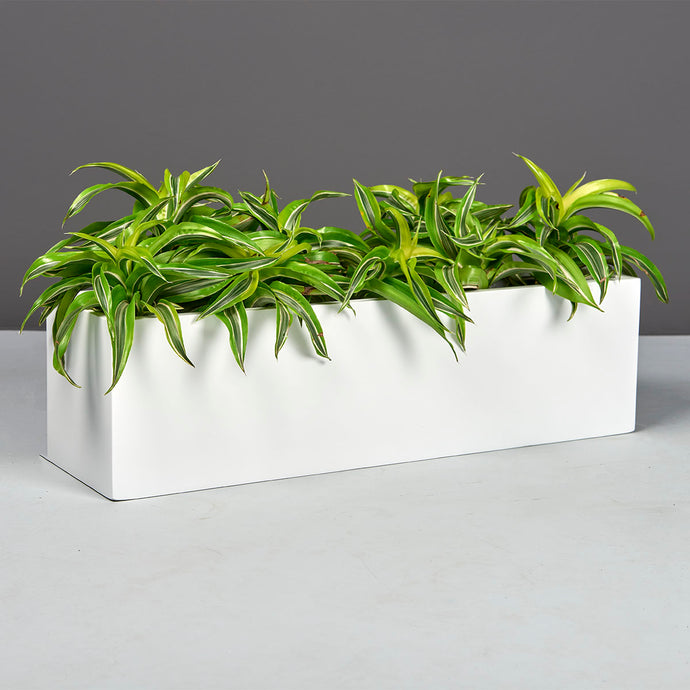 Jay Scotts Weir Table Top Planter: 26