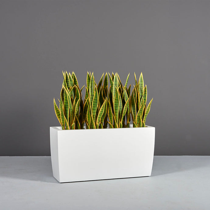 Panama Tapered Rectangular Fiberglass Planter Box
