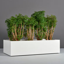 "Load image into Gallery viewer, Antwerp Rectangular Fiberglass Planter Box: 48""L x 24""W x 12""H"