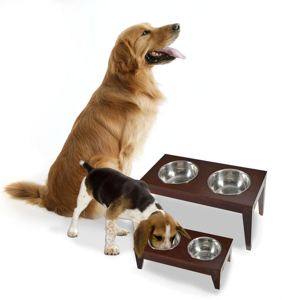 Raised Pet Bowls Feeder for Dog or Cat, Pets - Yardify.com