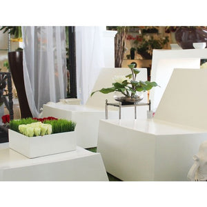 Jay Scotts Ondara Table Top Planter