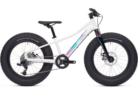 Specialized Fat Boy 20