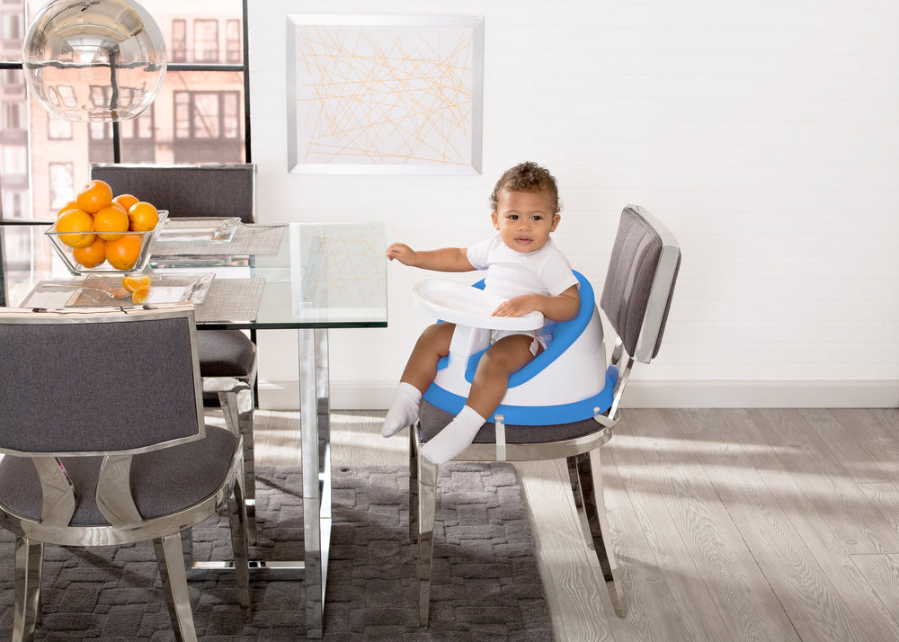 Deluxe Multi-Use Booster Seat with 180-Degree Swivel