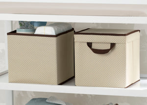 Delta Children Beige (250) 2-Pack Lidded Storage Bins (SS2165), Details, c1c
