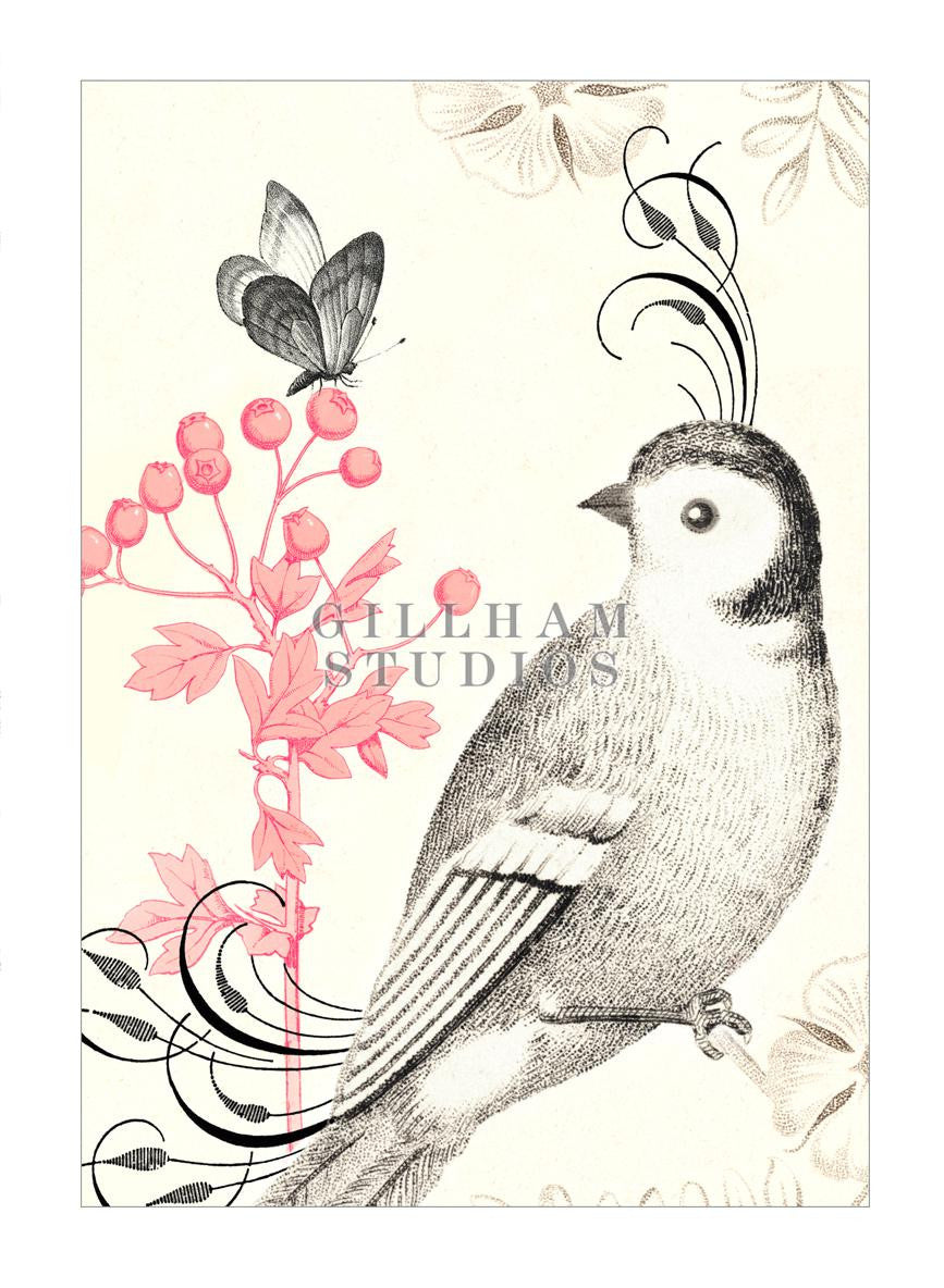 pencil drawing of bird and butterfly with pink flower illustration
