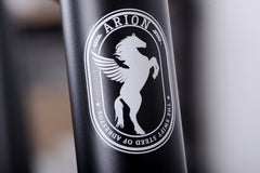ARION CARBON