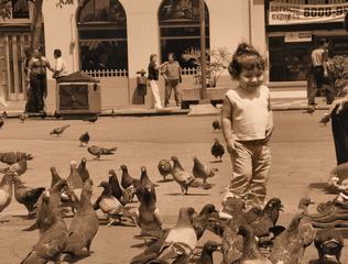 Girl With Pigeons - Sepia Print