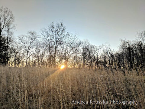 Sunrise over a winter field in Cookeville Tennessee