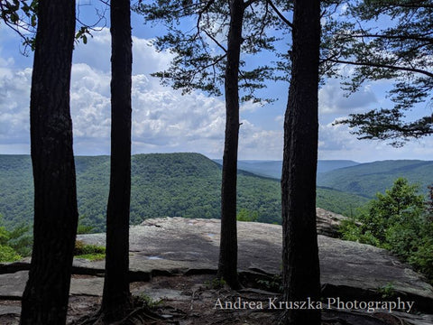 Mountain views through trees at Welch Point in Sparta Tennessee