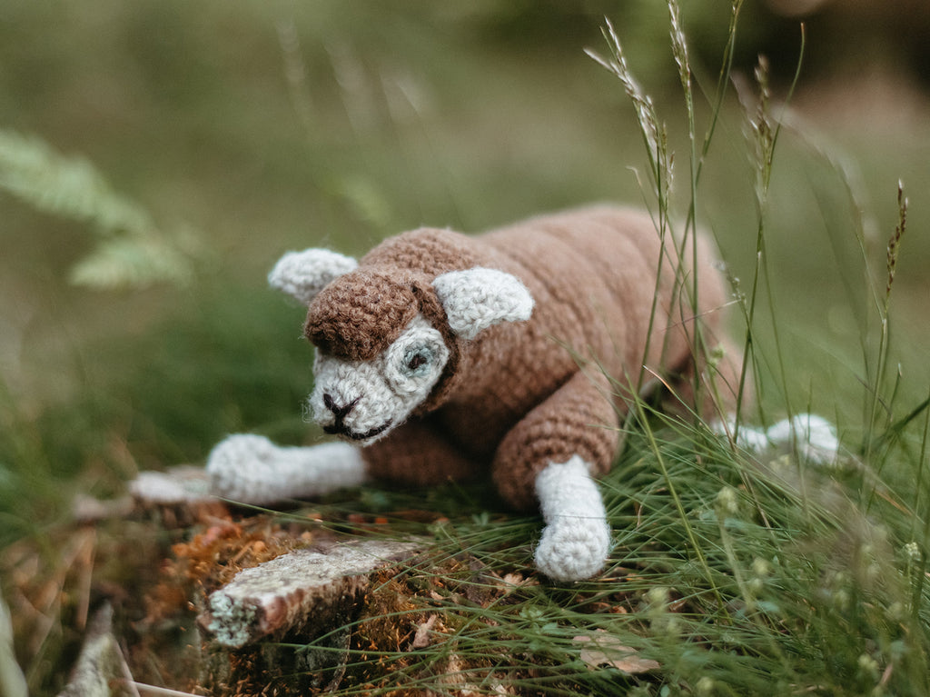 Finished Bleep the Sheep sitting on a grassy spot.